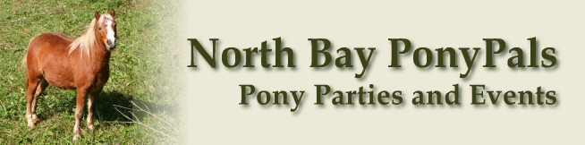 Pony Parties and Events